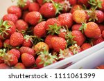 strawberry. strawberries in... | Shutterstock . vector #1111061399