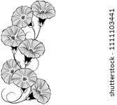 floral design with bindweed on... | Shutterstock .eps vector #1111103441