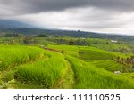 Rice terraces under the clouds, Bali, Indonesia - stock photo