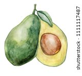 watercolor avocado illustration ... | Shutterstock . vector #1111117487