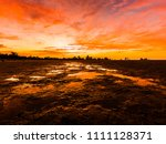 beautiful  bright  saturated ... | Shutterstock . vector #1111128371