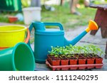 gardening on a country site in... | Shutterstock . vector #1111240295