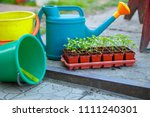 gardening on a country site in... | Shutterstock . vector #1111240301
