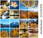 autumn scene collage - stock photo