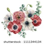 watercolor ranunculus and... | Shutterstock . vector #1111344134
