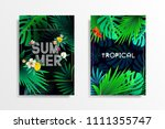 summer tropical background... | Shutterstock .eps vector #1111355747