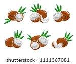 coconut set. vector | Shutterstock .eps vector #1111367081