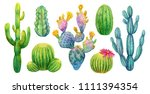 Cactus Set  Hand Painted...
