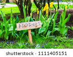 """sign plate """"flowers"""" in... 