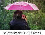 Stock photo friendship of a human with a cat and a dog a kitten and a puppy are sitting hiding from the rain 1111412951