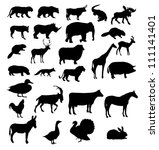 Stock vector vector set of animals silhouette 111141401