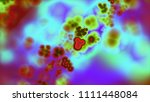 images in clinical medicine.... | Shutterstock . vector #1111448084