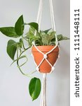 a macrame plant hanger with a... | Shutterstock . vector #1111448111