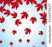 falling red maple leaves... | Shutterstock .eps vector #1111475117