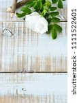 gardenia flowers on white wash... | Shutterstock . vector #1111522601