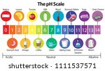 an education poster of ph scale ... | Shutterstock .eps vector #1111537571