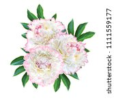 flower composition. a bouquet... | Shutterstock . vector #1111559177