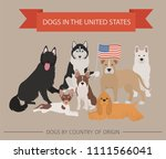 dogs in the united states.... | Shutterstock .eps vector #1111566041