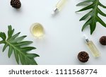cosmetic nature skincare and... | Shutterstock . vector #1111568774
