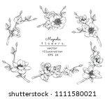 sketch floral botany collection.... | Shutterstock .eps vector #1111580021