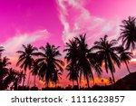 beautiful outdoor view with...   Shutterstock . vector #1111623857