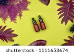 cosmetic bottle containers with ... | Shutterstock . vector #1111653674