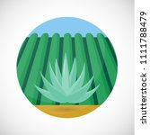 blue agave vector flat icon ...   Shutterstock .eps vector #1111788479