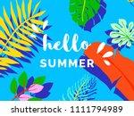 hello summer banner background... | Shutterstock .eps vector #1111794989