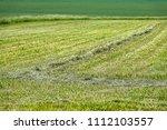 mown   cut farmers field  grass ... | Shutterstock . vector #1112103557