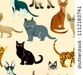 vector cute cat. cartoon animal ... | Shutterstock .eps vector #1112183741