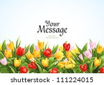 flowers vector background with...