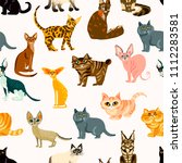 vector cute cat. cartoon animal ... | Shutterstock .eps vector #1112283581