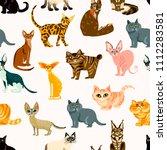 vector cute cat. cartoon animal ... | Shutterstock .eps vector #1112283581