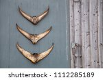 three  tuna tail fins  hanging... | Shutterstock . vector #1112285189