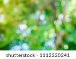 abstract green bokeh nature... | Shutterstock . vector #1112320241