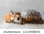 Stock photo rabbit and turtle are discussing the competition 1112408651
