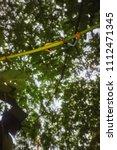 agalychnis callidryas tropical... | Shutterstock . vector #1112471345