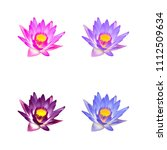 colorful lotus  waterlily are... | Shutterstock . vector #1112509634
