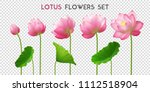 five beautiful pink realistic... | Shutterstock .eps vector #1112518904