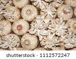 organic oyster mushrooms... | Shutterstock . vector #1112572247