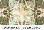 kaleidoscope pattern. beautiful ... | Shutterstock . vector #1112598449