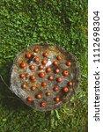 fresh vegetables. cherry... | Shutterstock . vector #1112698304