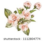 watercolor drawing of a branch... | Shutterstock . vector #1112804774