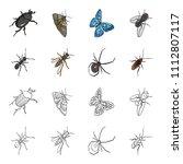 an insect arthropod  an osa  a... | Shutterstock .eps vector #1112807117