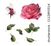 roses and leaves  watercolor ... | Shutterstock . vector #1112893514