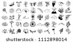 hand drawn illustrations | Shutterstock .eps vector #1112898014