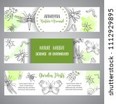 bugs insects hand drawn banner. ... | Shutterstock .eps vector #1112929895