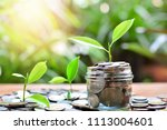 tree growth up on money coins... | Shutterstock . vector #1113004601