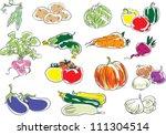 vegetables | Shutterstock .eps vector #111304514