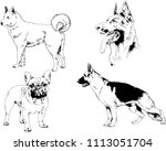 vector drawings sketches... | Shutterstock .eps vector #1113051704